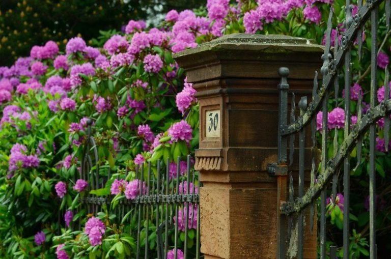 Co warto wiedzieć na temat ogrodzeń tymczasowych?